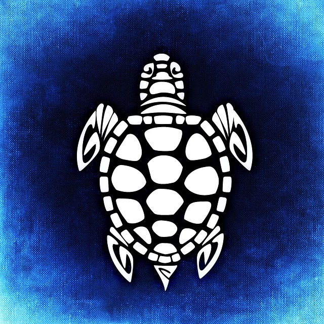 Turtle, Panzer, Animal, Abstract