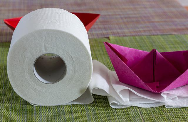 Toilet Paper, Boat, Paper, Ship, Origami, Red, White