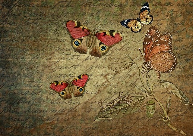 Greeting Card, Letters, Paper, Stationery, Butterflies