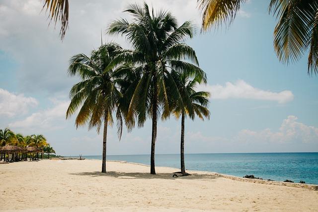 Beach, Idyllic, Island, Ocean, Palm Trees, Paradise