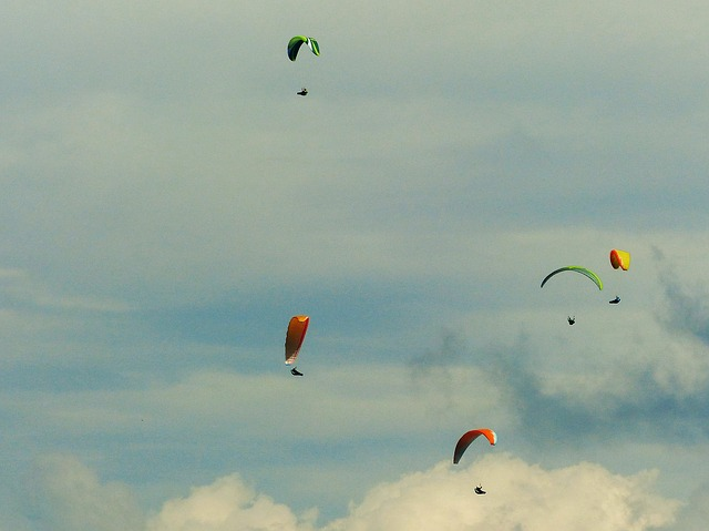 Paraglider, Thermals, Paragliding, Fly, Freedom
