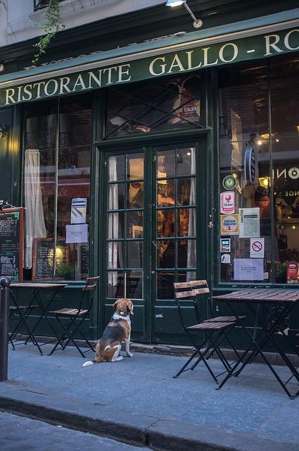 French Restaurant, Brewery, Paris, Waiting, Dog