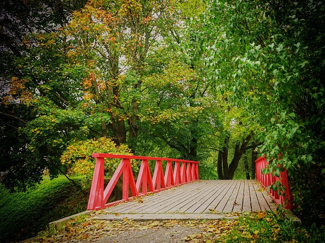 Autumn, Bridge, Park, Red, Trees, Wood