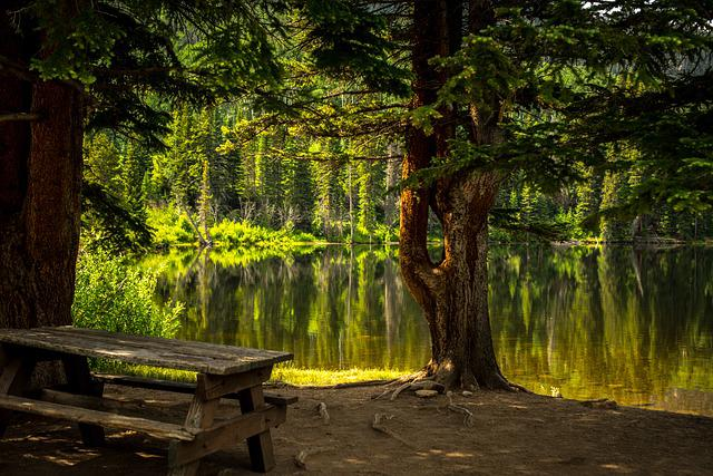 Bench, Lake, Park, Recreational Area, Fall, Landscape