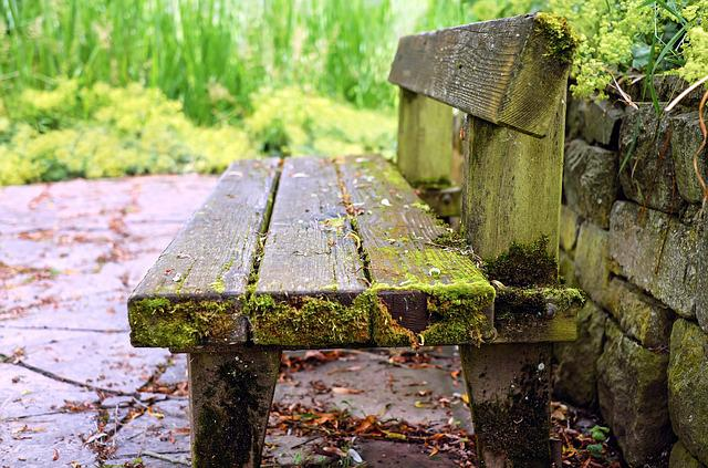 Bank, Bench, Old Wood Bench, Weathered, Park Bench