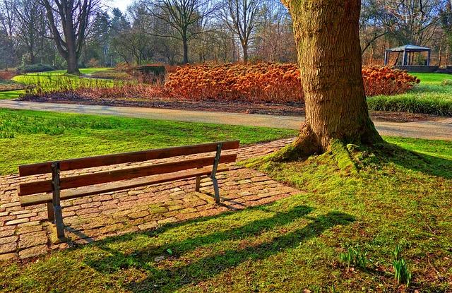 Bench, Tree, Grass, Path, Hortensia, Park, Garden