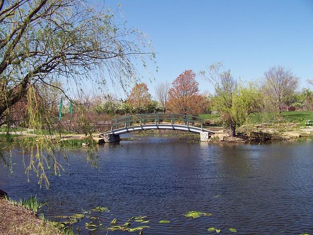 Monet, Bridge, Autumn, Park, Water, Pond