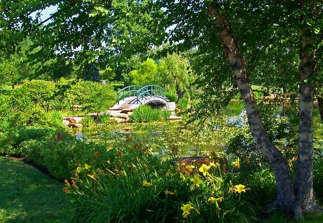 Monet, Bridge, Park, Summer, Artistic, Botanical