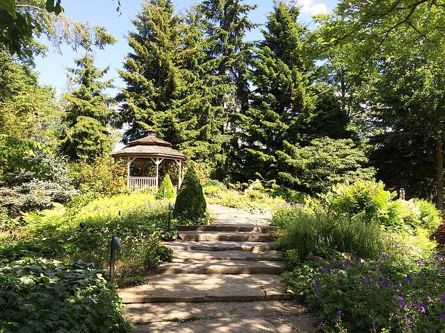 Efteling, Kaatsheuvel, Park, Nature, Tree, Trees