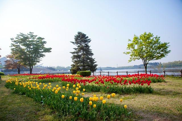Wood, Park, Nature, Outdoors, Tube Clip, Lake Park