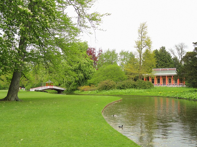 Copenhagen, Denmark, Stream, Water, Reflections, Park