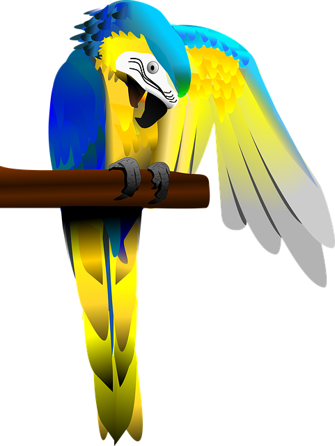 Blue And Gold Macaw, Parrot, Macaw, Bird, Colorful