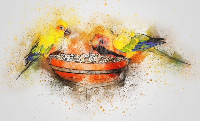 Parrot, Birds, Eating, Art, Abstract, Watercolor