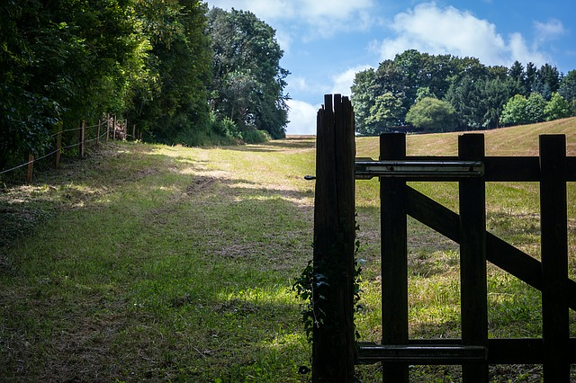 Fence, Gate, Pasture, Pasture Fence, Goal, Input