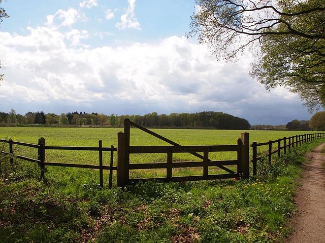 Landscape, Pasture, Fence, Grass, Clouds, Summer, Air