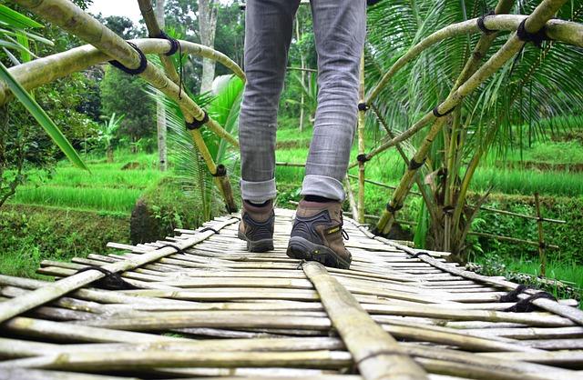Feet, Walk, Bamboo, Walking, Foot, Shoe, Outdoor, Path
