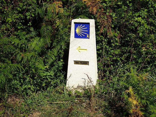 Way Of St James, Galicia, Camino Santiago, Path