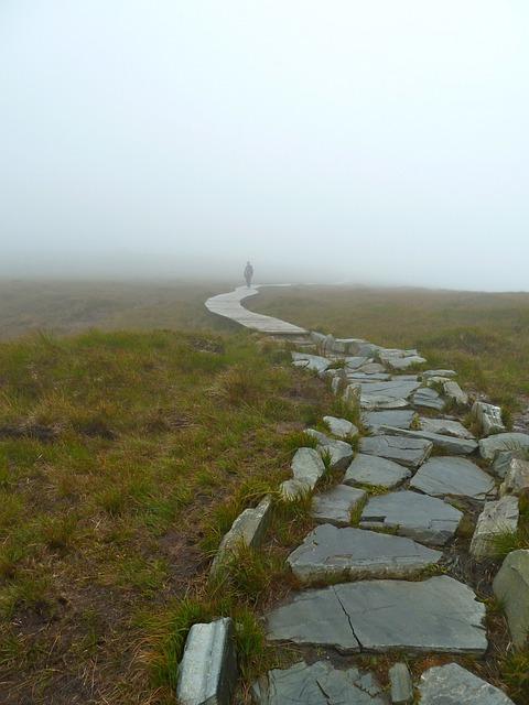 Misty, Fog, Walk, Pathway, Rock Walkway, Nature, Ground