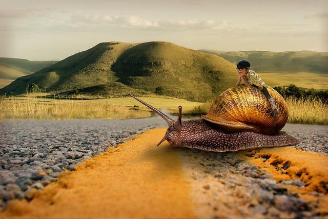 Snail, Girl, Patience, Ride, Road, Slowly, Fantasy