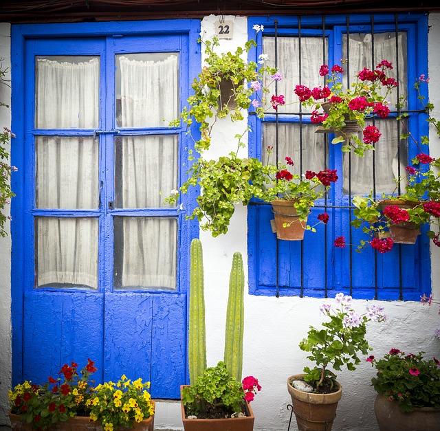 Courtyards, Cordoba, Patios De Córdoba, Flower, Plant