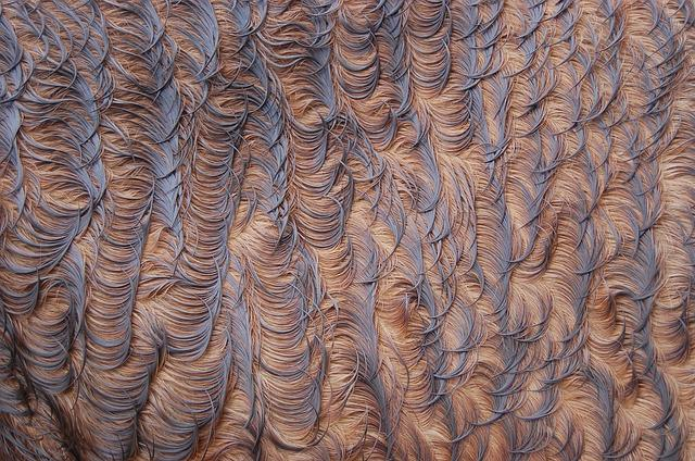 Pattern, Background, Texture, Abstract