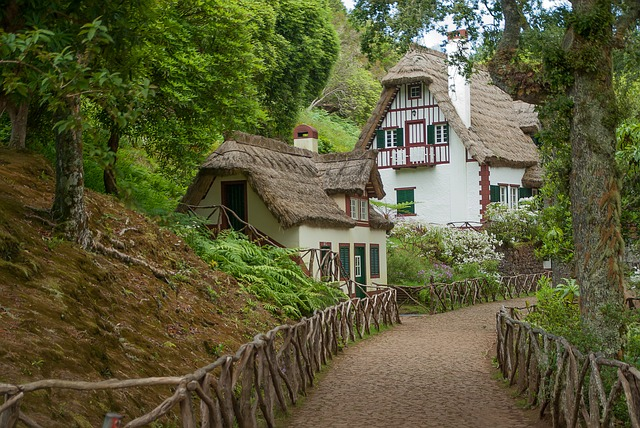 Madeira, House In The Forest, Thatch, Roof, Pavilion