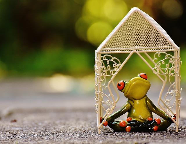 Pavilion, Frog, Yoga, Garden, Summer, Park, Rest