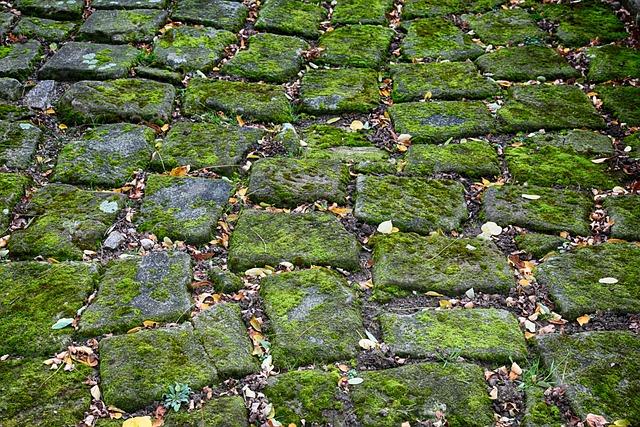 Cobblestones, Moss, Green, Roof, Basalt, Paving Stones