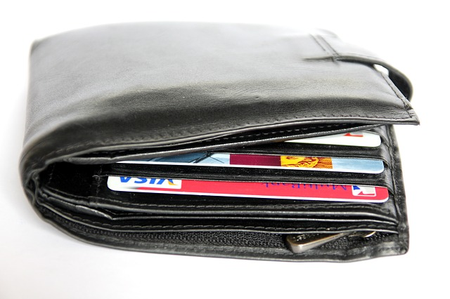 Wallet, Payment Cards, Pay, Credit Card, Card, Money