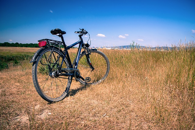 Bike, Tourism, Peace Of Mind, Field
