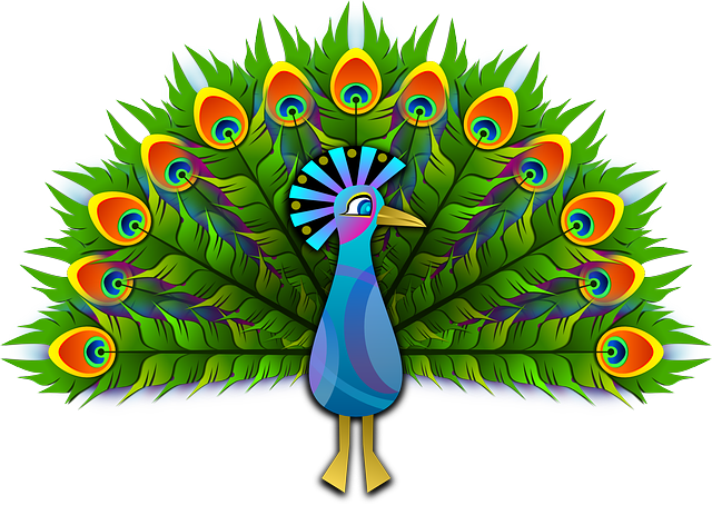 Peacock, Peafowl, Peachick, Bird, Colorful, Stylised