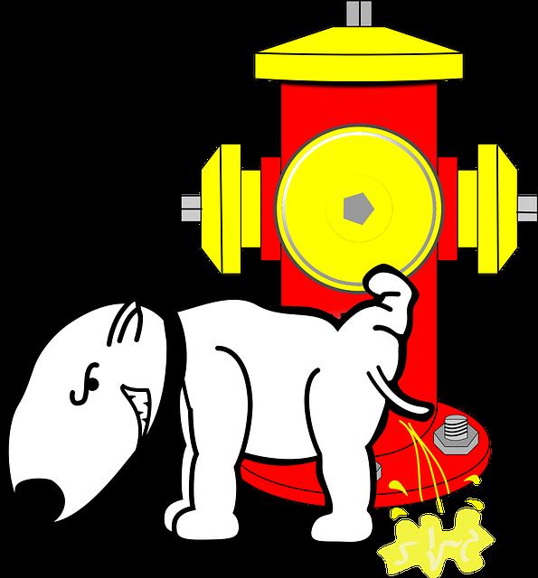Dog, Hydrant, Pee