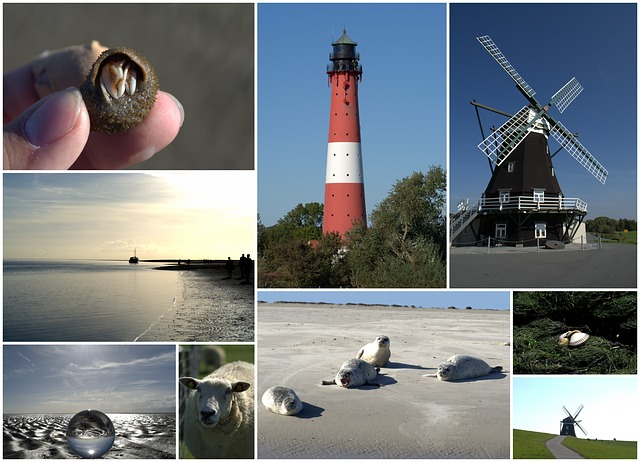 Collage, Postcard, North Sea, Nordfriesland, Pellworm
