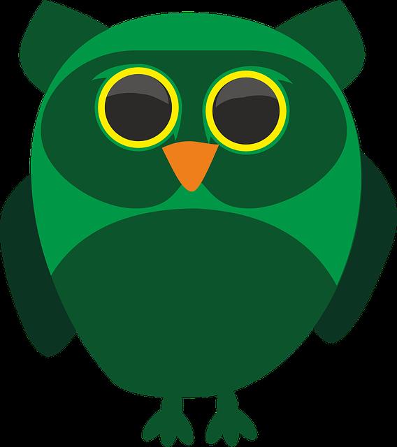 Sowa, Owls, Bird, Wild, Birds, Pen, Beak, Pet, Animal