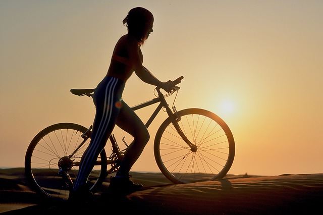 Wheel, Bike, Cyclist, Sunset, Woman, People, Active