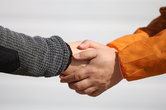 People, Hand, Male, Handshake, Man, Ask, Election, Deal