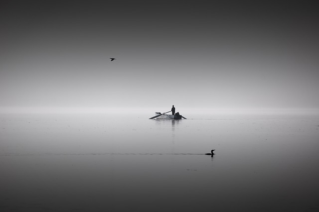 Black, White, People, Lake, Bw, Light, Fog, Misty