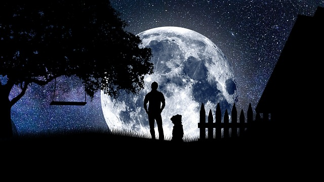 Nature, Outdoors, People, No One, Weather, Moon, Easy