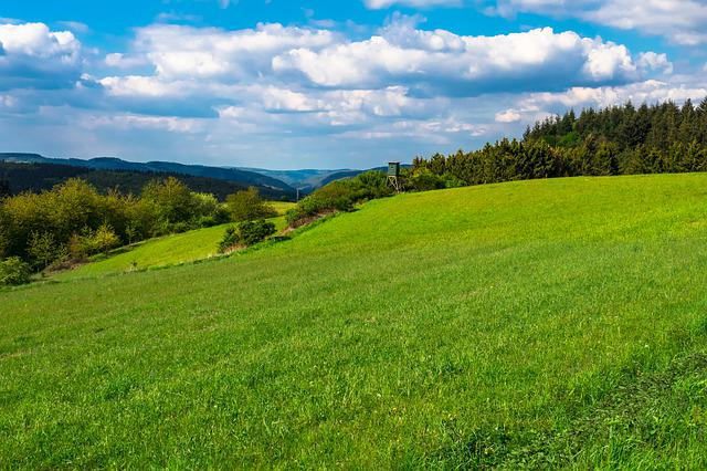 Meadow, Pasture, Hill, Sky, Clouds, Perch, Delight