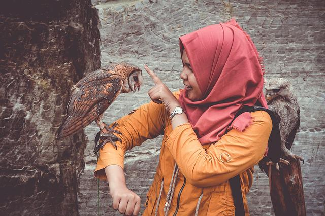 Animals, Avian, Birds, Girl, Owls, Perched, Person
