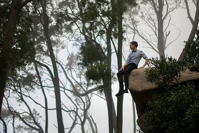 Fog, Foggy, Man, Person, Rock, Sitting, Trees