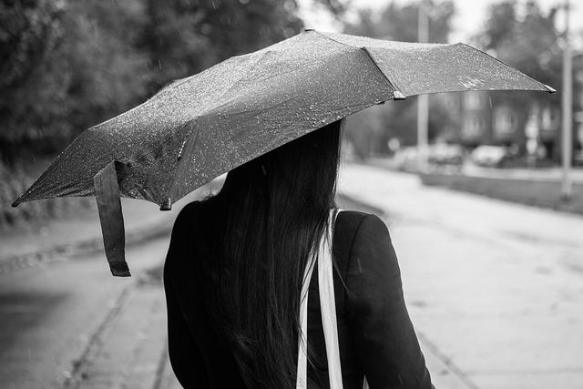 Woman, Rain, Umbrella, Female, People, Person, Girl
