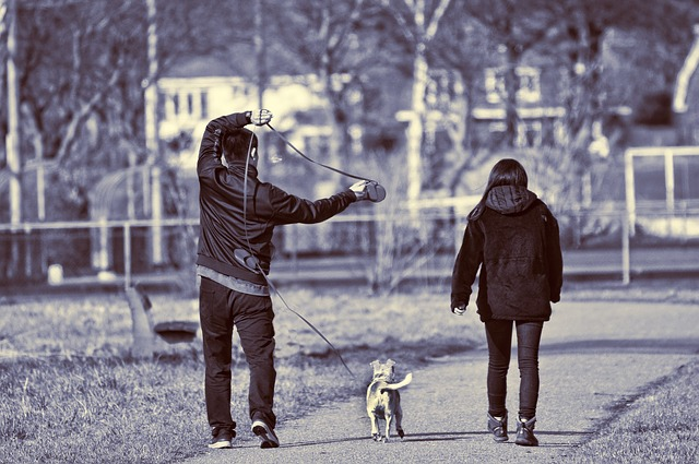 Man, Woman, Persons, People, Dog, Canine, Walking