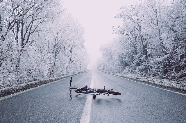Bicycle, Bike, Fog, Perspective, Road, Snow, Trees