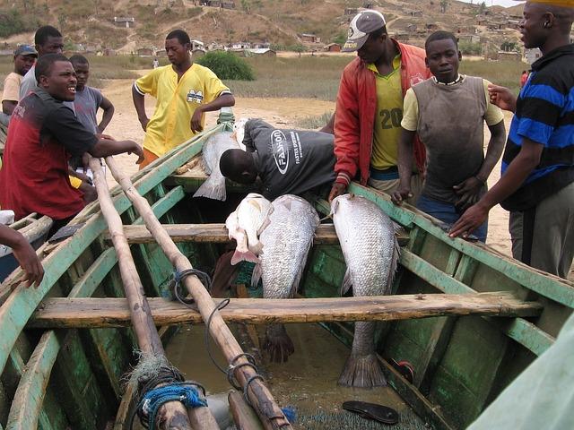Pescadores, Angola, Men, Boat, Fish, Fishermen, Catch