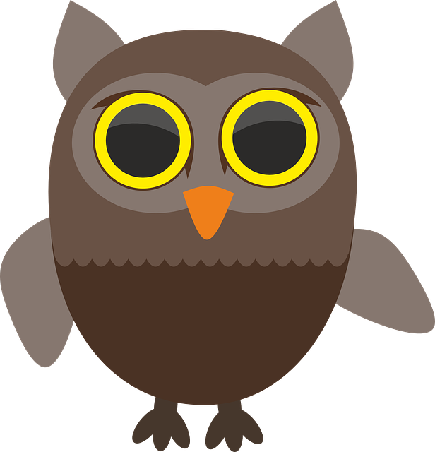 Sowa, Owls, Bird, Wild, Birds, Pen, Beak, Pet, Animal