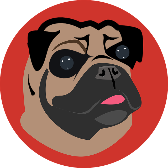 Pug, Dog, Cartoon Dog, Animal, Pet, Face, Cute