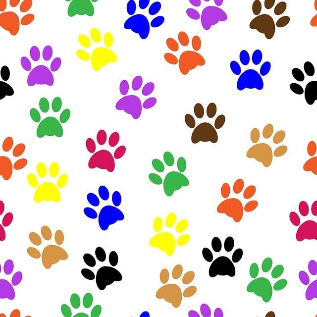 Pawprints, Paw Prints, Paw, Animal, Pet, Dog, Design