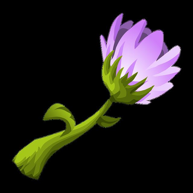 Floral, Natural, Blossom, Bloom, Petal, Botanical