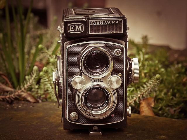 Camera, Photo Camera, Yashica, Photograph, Old